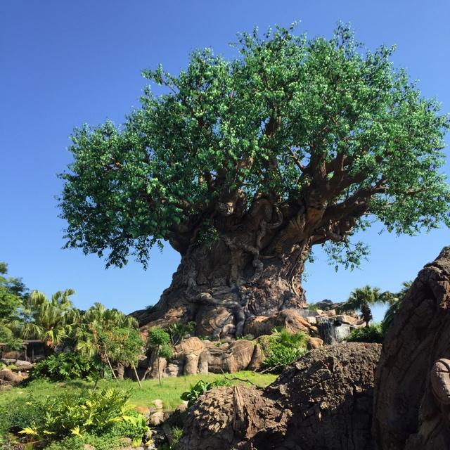 Árvore da Vida no Animal Kingdom