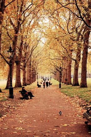 Londres Outono